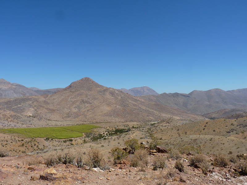 Andean desert!  Complete with vineyards!!!