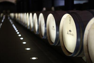 Barrel Aging, La bodega Lapostolle Wines, Apalta Region, Valle Colchagua, Santa Cruz, Chile