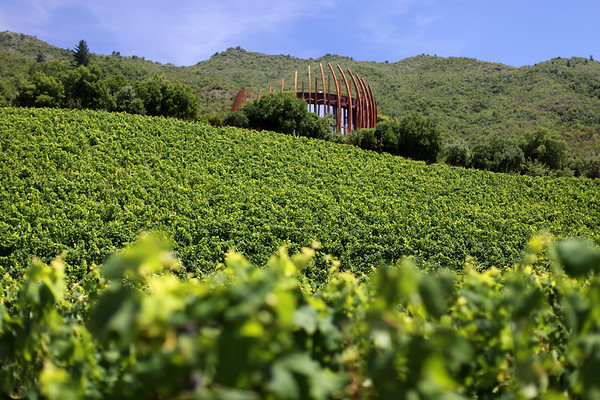 La bodega Lapostolle Wines, Apalta Region, Valle Colchagua, Santa Cruz, Chile