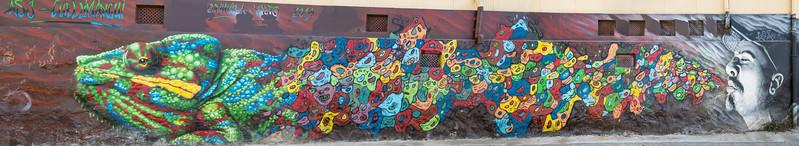 Block-Long Chameleon - Valparaiso