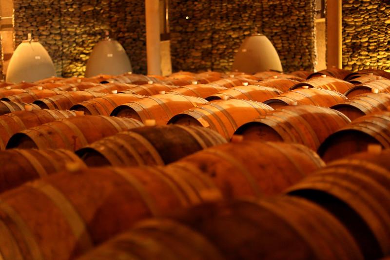 Matetic Vineyards, Casablanca Valley Wine Region, Chile