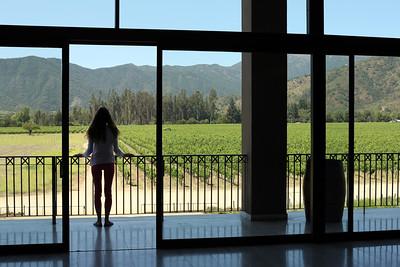 Casona Veramonte Winery, Casablanca Valley Wine Region, Chile