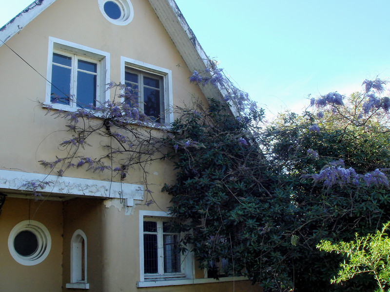 Villarrica ~ great old house in need of fixing up...hmmm.<br /> Well established Wisteria make it even more enticing.