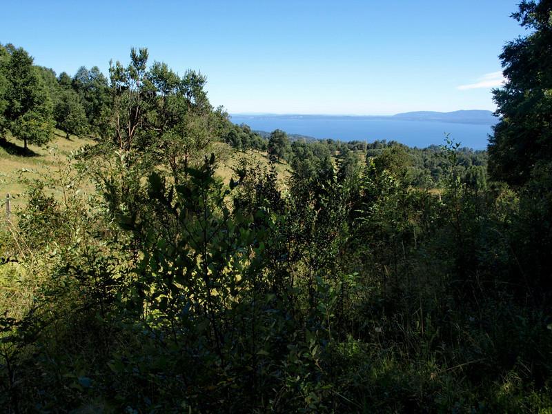Lake, between Villarrica & Pucon