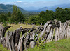 Panguipulli area ~ ancient looking fences