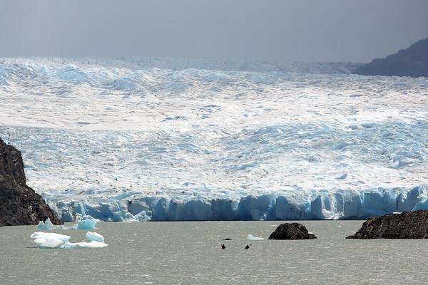 Grey Glacier, Lago Grey, Parque Nacional Torres del Paine, Patagonia, Chile