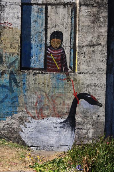 Valdivia, January 2012