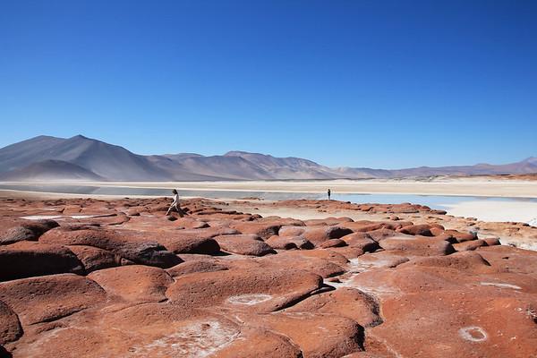 Miscanti Lagune / Piedra Rochas