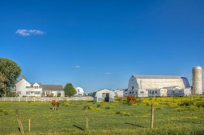 Cowglls Corner Farm Kent County Dover Delaware