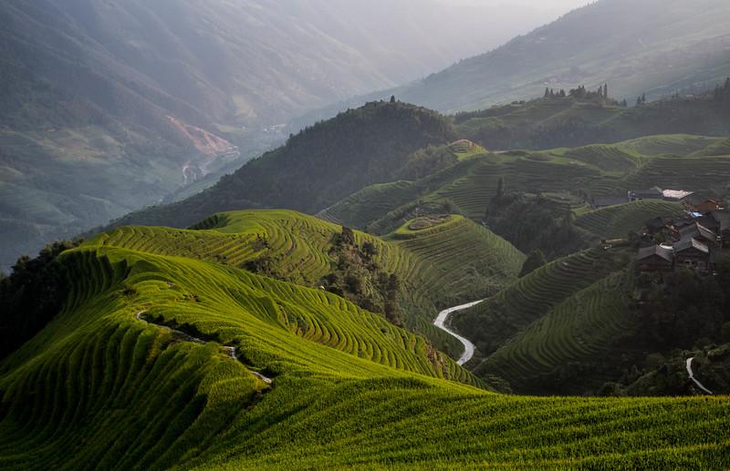The Rice Terraces of P'ingan 2