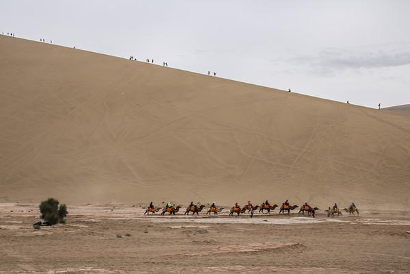 Camel Ride (Dunhuang)
