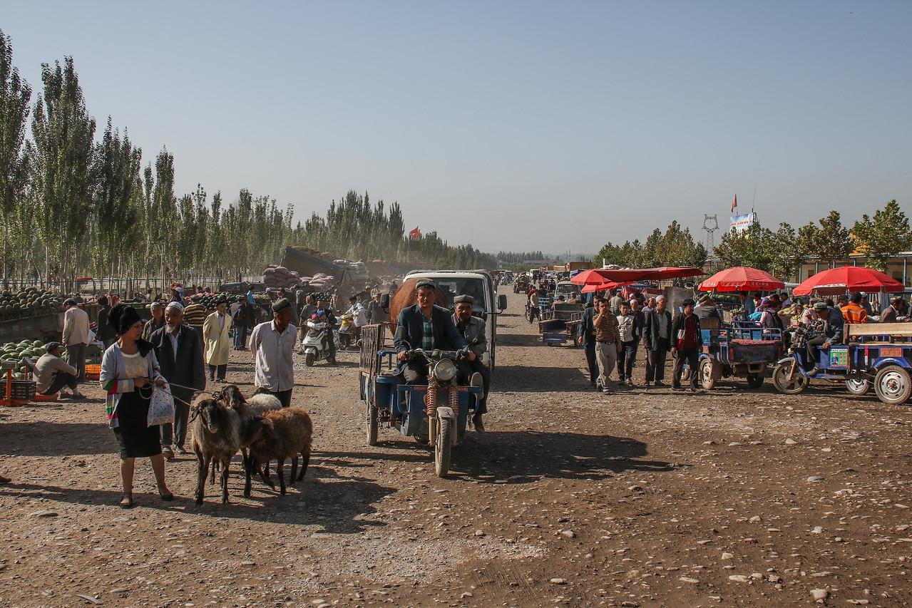 Kashgar Livestock Market