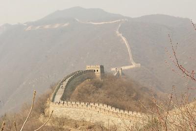China (2015)