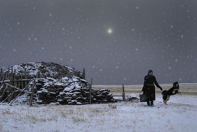 Grasslands of Inner Mongolia 【winter】