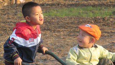 Travel  china Inner Mongolia Grassland