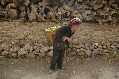 Jiaju Zangzhai, Sichuan