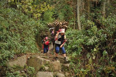 Duoyishu, Yuanyang, Yunnan