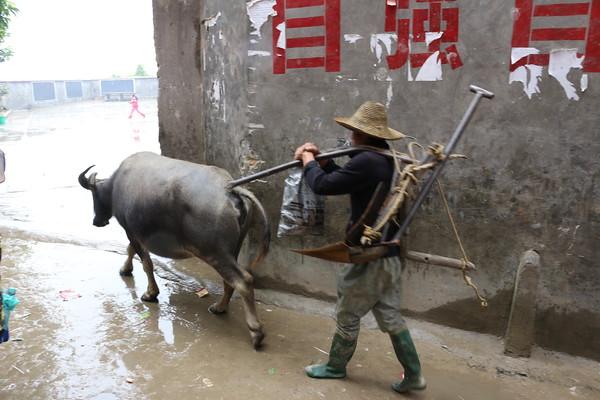 Village Life, Yunnan Province