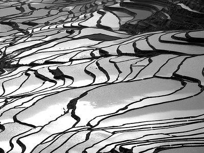 Southern Yunnan 雲南(南) 2005 Mar