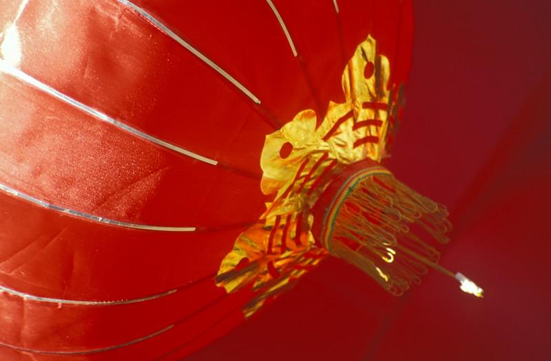 Red Chinese Lantern, Yunnan