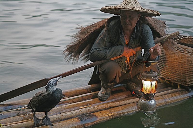 Merganser and Fisherman, Yang Shuo, China