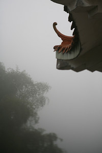 Eave, Tree, Fog, Yang Shuo, China