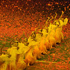 This Letter to the Future at the 2008 Beijing Paralympics was formed by thousands of dancers.