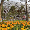 Bird's Nest, the National Stadium for the ceremonies and athletics events of the 2008 Beijing Olympics.