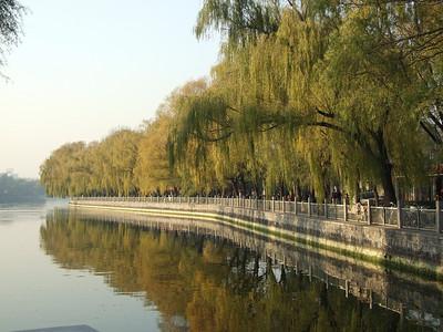 Qianhai en automne