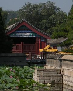 Summer palace 0808