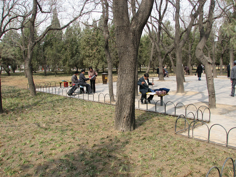 Players practicing the erhu (two-stringed Chinese violin) in Tian Tan Park