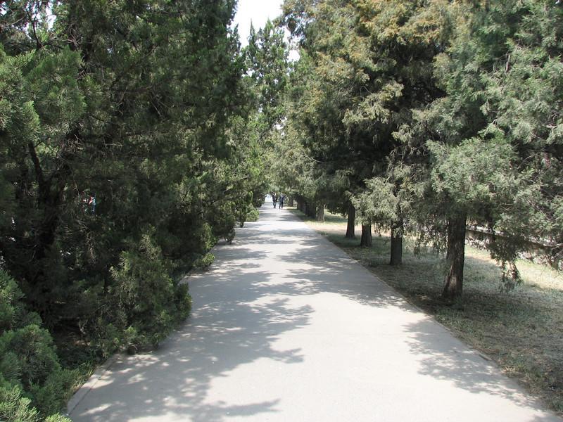 Quiet walkway in Tian Tan Park