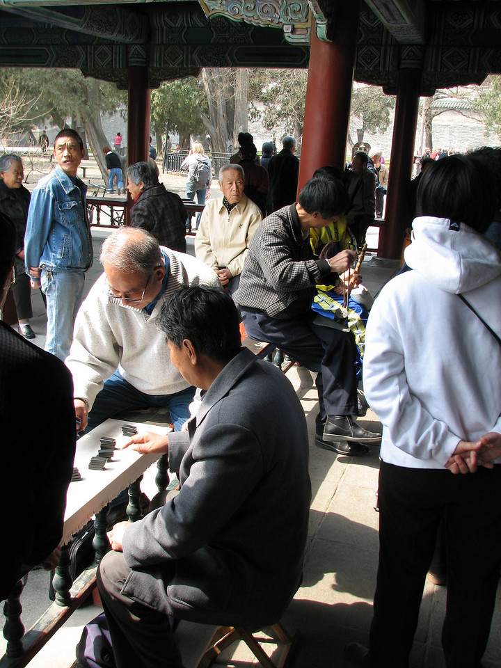 Gambling over a game of dominoes in Tian Tan Park