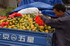 China, Hubei, Yichang: Selecting the best oranges.