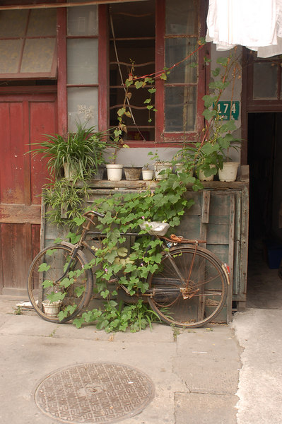 China, Shanghai: Just like mom's bike.