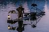 Fisherman with 3 fishing cormorants, Li River, Xingping, Guiln, China