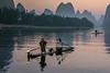 Early morning activity on the Li River, Xingping, Guilin, China
