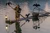 Fishing with cormorants at dawn, Li River, Xingping, Guilin, China
