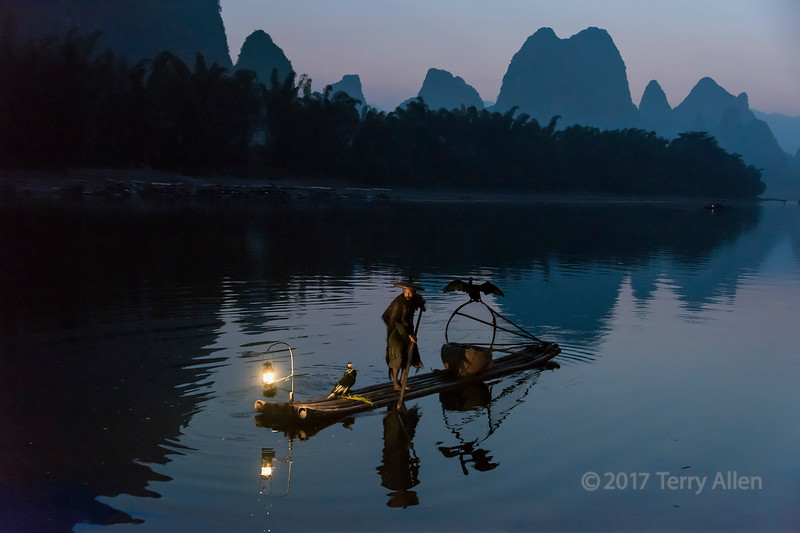 Cormorant fisherman with his three cormorants, Li River, Xingping, Guilin, China