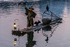Fisherman holding up a cormorant, Li River, Xingping, Guilin, China