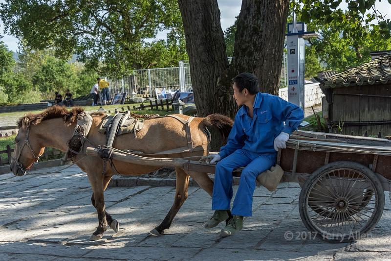 Horse and cart near South Lake, Hongcun Ancient Town, Lixian, Anhui, China