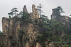 Granite cliffs and Huangshan pines (Pinus hwangshanensis), Huangshan Mountains, China