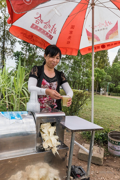 Woman grinding sugar cane for juice near the Memorial Archways, Tanque, Shenxian county, Anhui, China