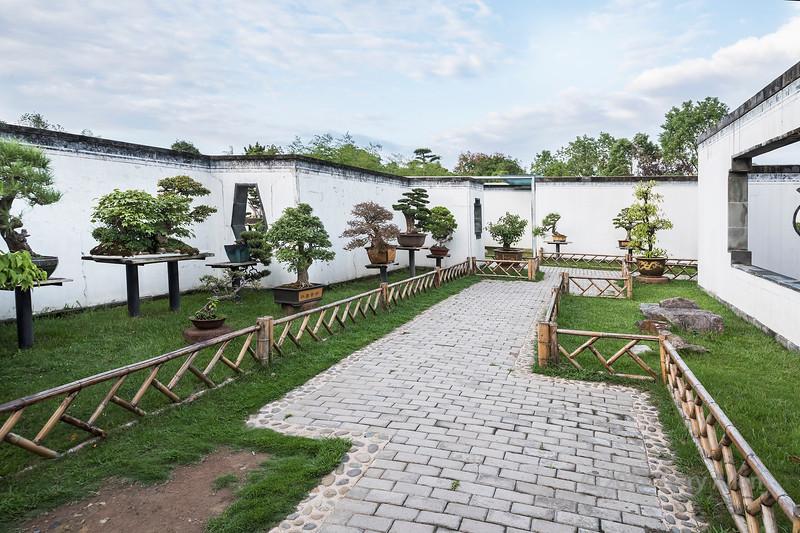 Wall garden lined with bonsai, Bao Family Garden, Shexian, Anhui, China