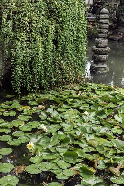 Water lilies and sculpture, Liu Yuan Classical Garden, Souzhou, China