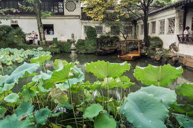 Liu Yuan (Lingering) Classical Garden in a light rain with lotus leaves, UNESCO, Souzhou, China