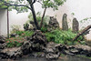 Stone garden in couryyard, Liu Yuan classical garden, Souzhou, China md