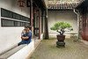 Small couryard with bonsai tree, Liu Yuan classical garden, Souzhou, China