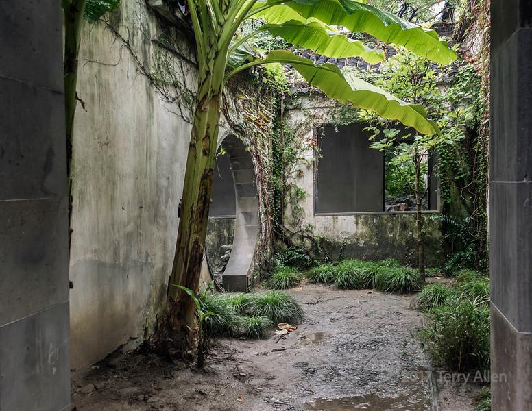 Small inner courtyard with banana tree, Liiu Yuan Classical Garden, Souzhou, China
