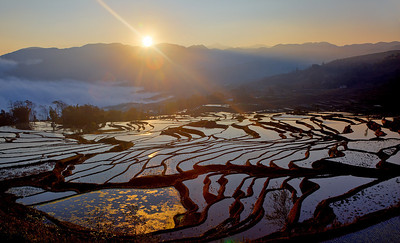 Ladder Paddy Fields, Yuanyang, Yunnan